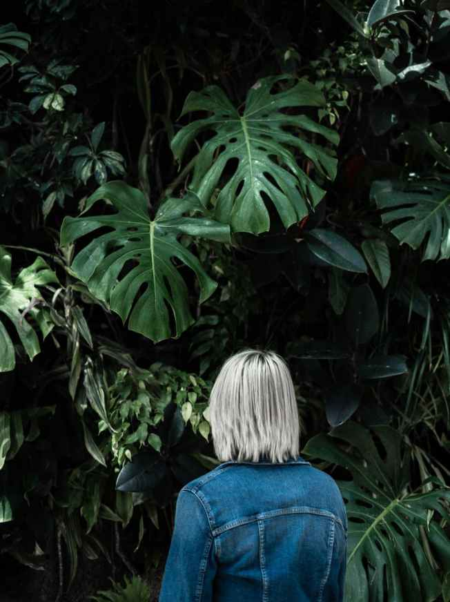 Photo by Scott Webb on Pexels.com